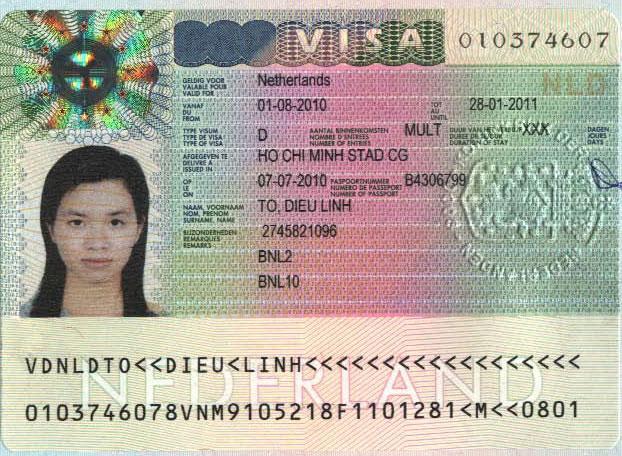Студенческие визы – как не получить отказ