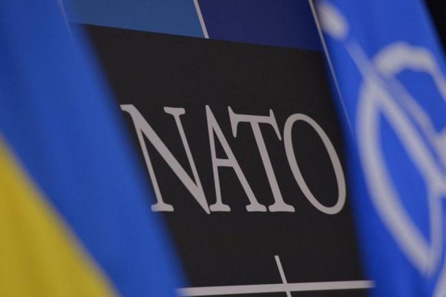 Журналист рассказал, когда Украина может стать членом НАТО