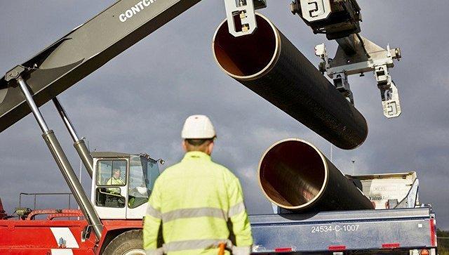 WWF призвал Меркель остановить строительство «Северного потока — 2»