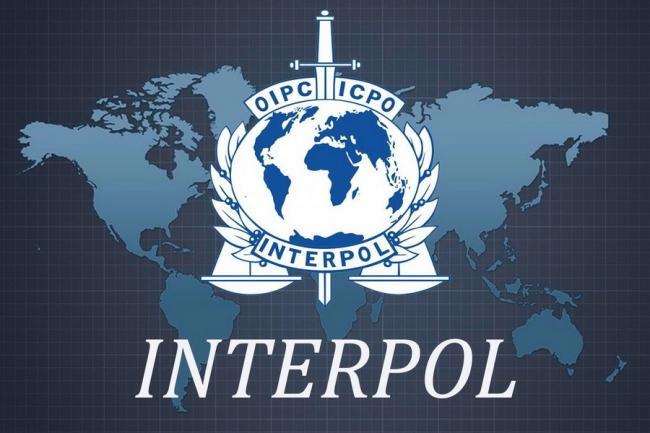 Интерпол обломал российские ожидания с Родченковым