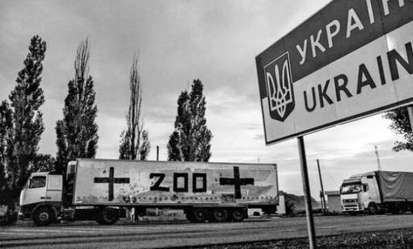 В Украине рассказали про огромные потери воинов Путина на Донбассе в начале войны: названы цифры