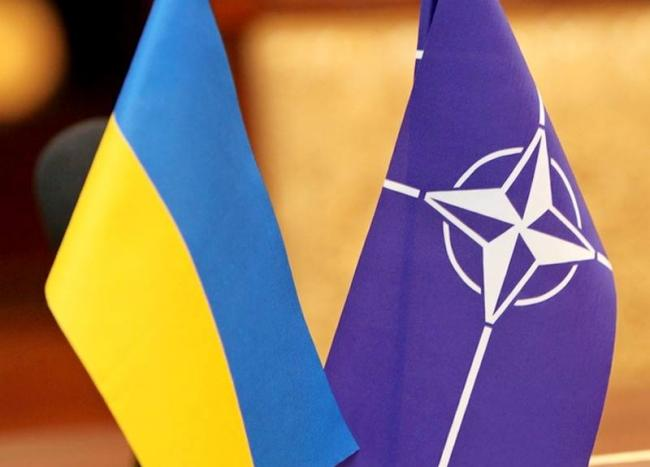 Украину ждет много реформ перед вступлением в НАТО, - нардеп