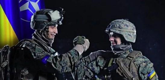 Членство Украины в НАТО: стали известны условия