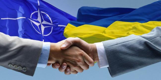 Представитель США в НАТО заявляет о поддержке стремлений Украины вступить в альянс