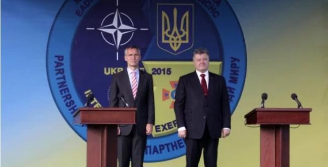 Дело не только в ВСУ: Полтарак рассказал о требованиях НАТО к Украине