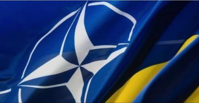 Украина не состоялась как государство: Венгрия выступила с требованием о пересмотре всех программ сотрудничества Украины с НАТО