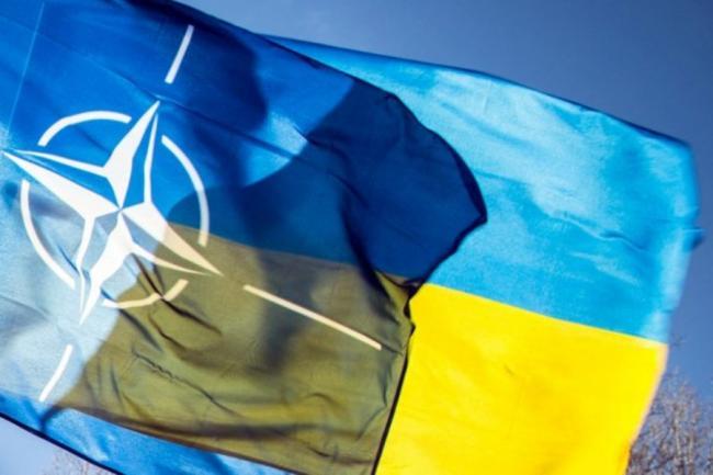 Украина переводит весь сектор обороны и безопасности на стандарты НАТО