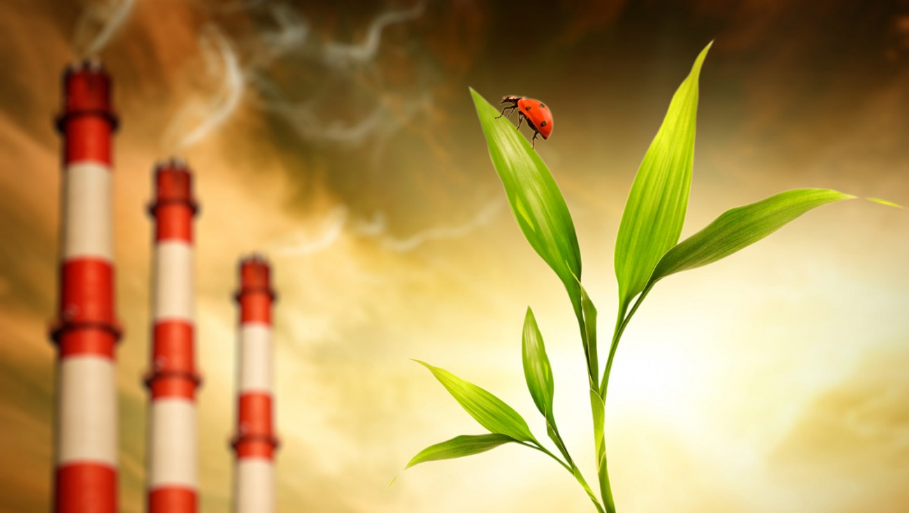 Расчет платы негативного воздействия на окружающую среду