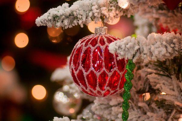 Новомосковский «Химик» поздравил с Новым годом