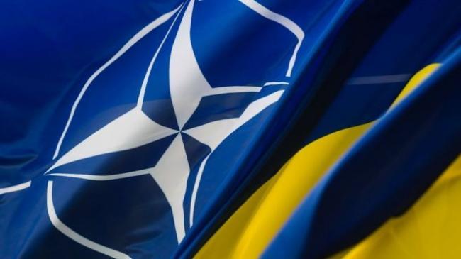 Украина ускорит вопрос членства в НАТО
