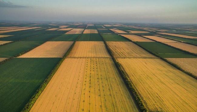 В Раде назвали дату рассмотрения закона о рынке земли