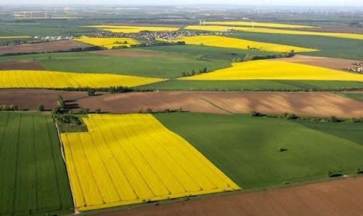 Купівля, продаж, оренда земельних ділянок в Україні